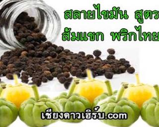ส้มแขกและพริกไทยดำ ยาสลายไขมันสูตรลดความอ้วน