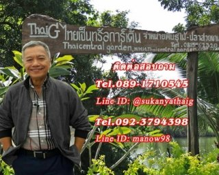 ThaiG ไทยเซ็นทรัล การ์เด้น