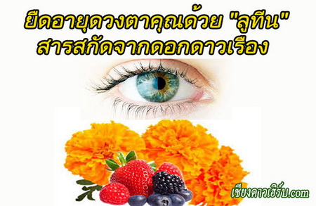 อาหารเสริมบำรุงสายตา ลูทีน