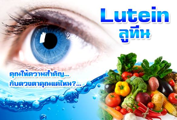 วิตามินบำรุงสายตา ลูทีน ยา อาหารเสริม ดวงตา
