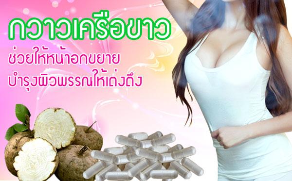 """ยานมโต อาหารเสริมเพิ่มฮอร์โมนผู้หญิง """"กวาวเครือขาวบำรุงธาตุ"""""""