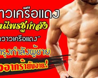 ไวอกร้าไทย กวาวเครือแดง มีฤทธิ์แรงแข็งโป๊กตลอดวัน